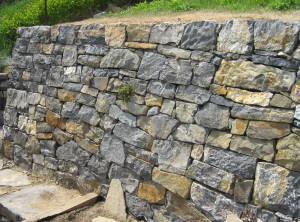 Suchá zeď – Brno, Salajni