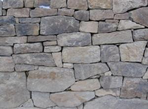 Suché zdivo – Lelekovice uBrna I